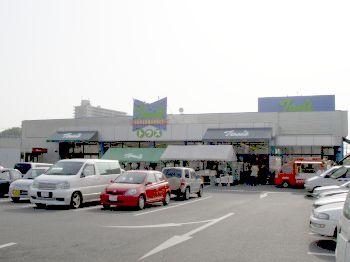 トウズ 京成佐倉店